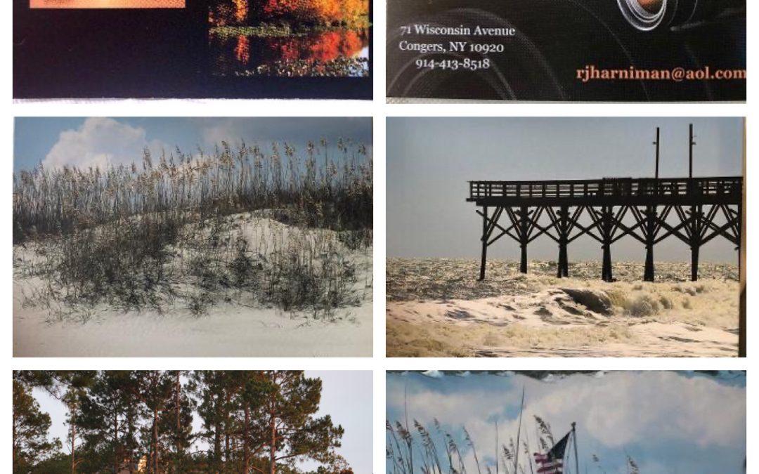 Landscape, Wildlife and Seascape Photographs